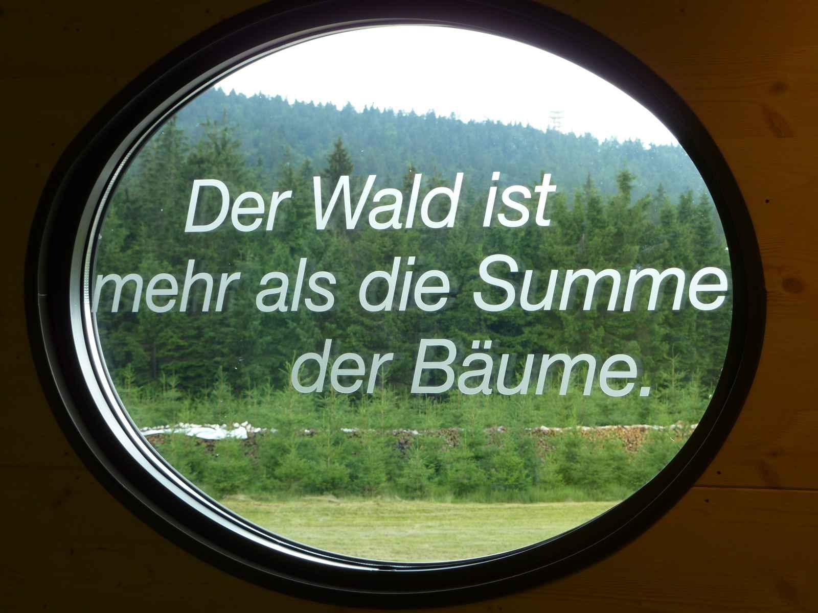 """Ausblick zum Wald aus ovalem Fenster """"Der Wald ist mehr als die Summe der Bäume"""""""