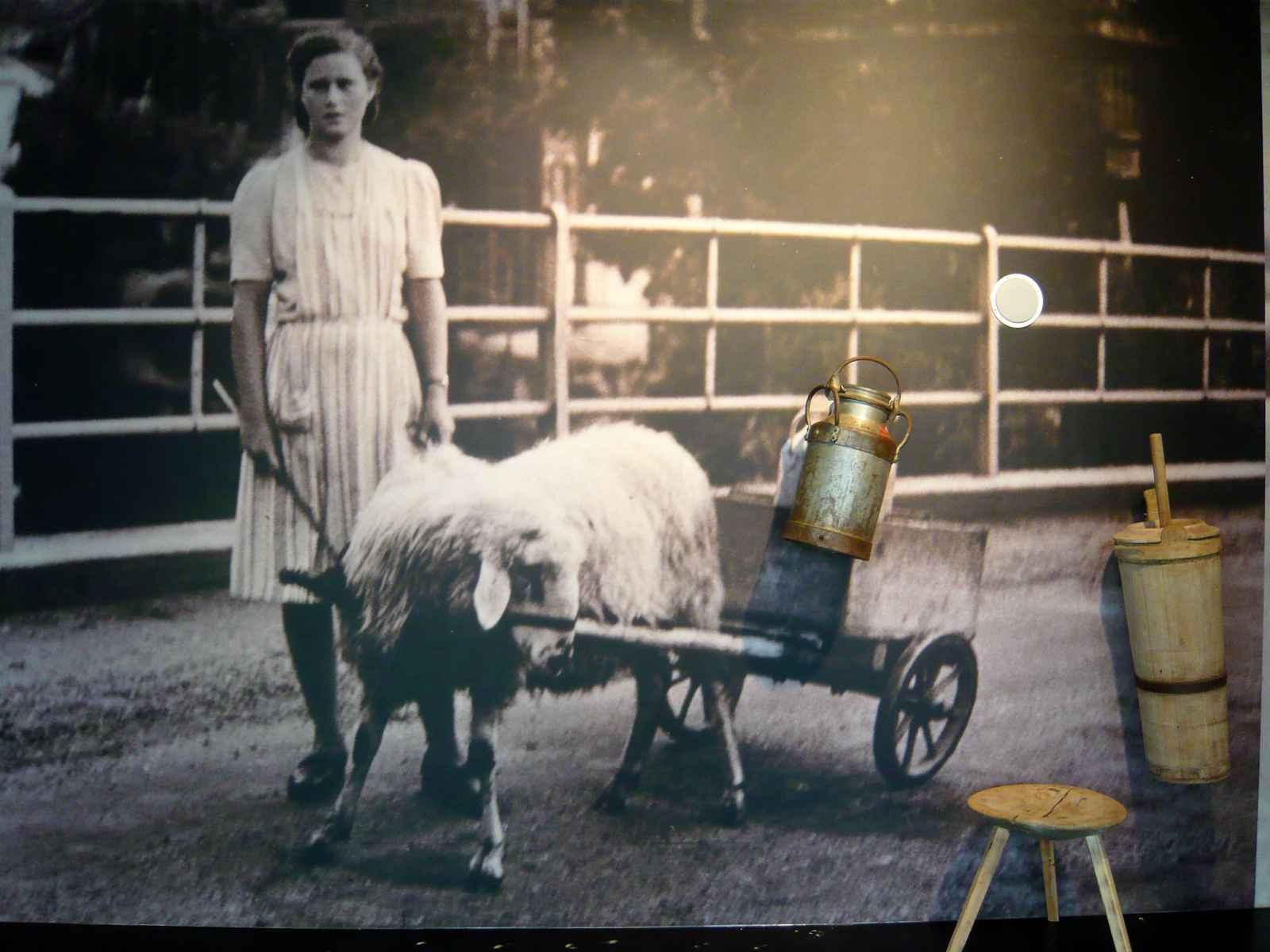 historisches Foto Marktfahrerin mit Originalobjekten und Audio