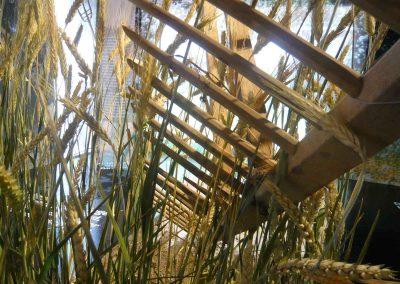 Bauernleben im Jahreskreis