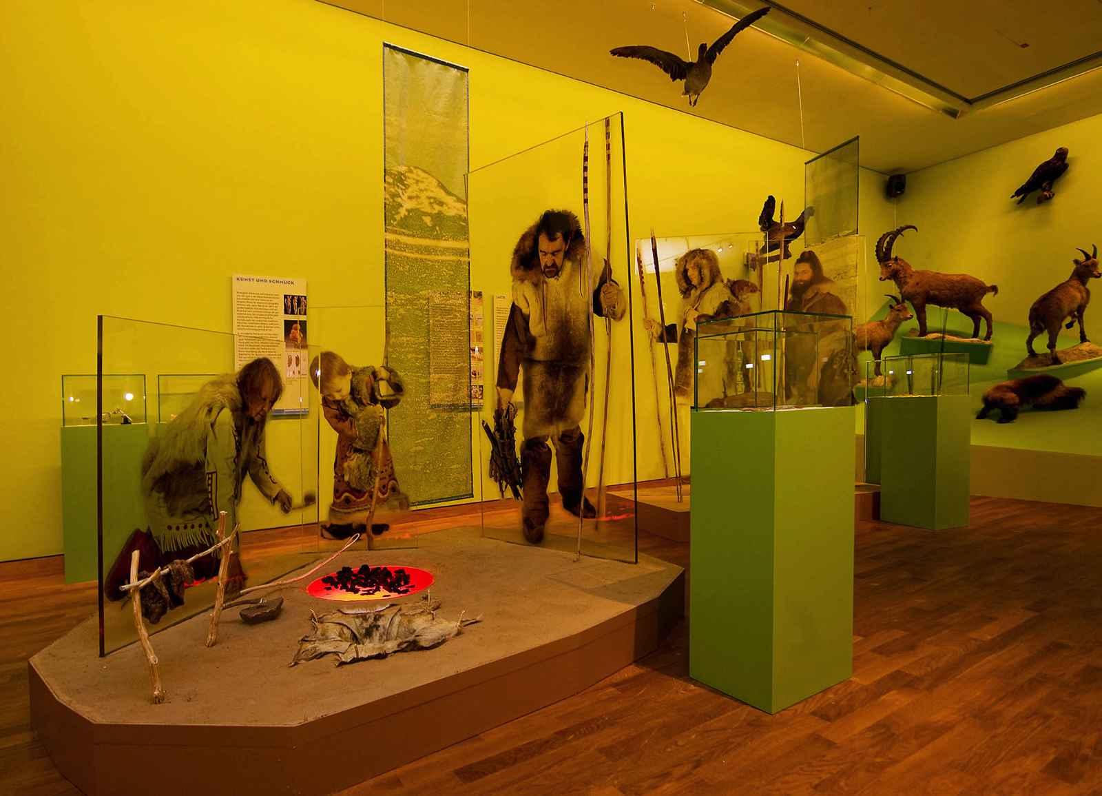 Sammler und Jäger