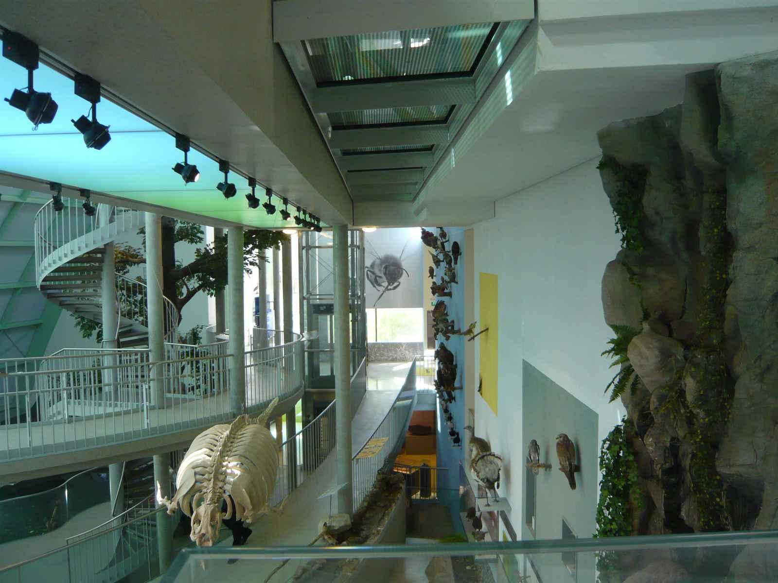 Museum NÖ Raumeindruck