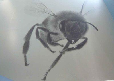 Bienen! Bienen!