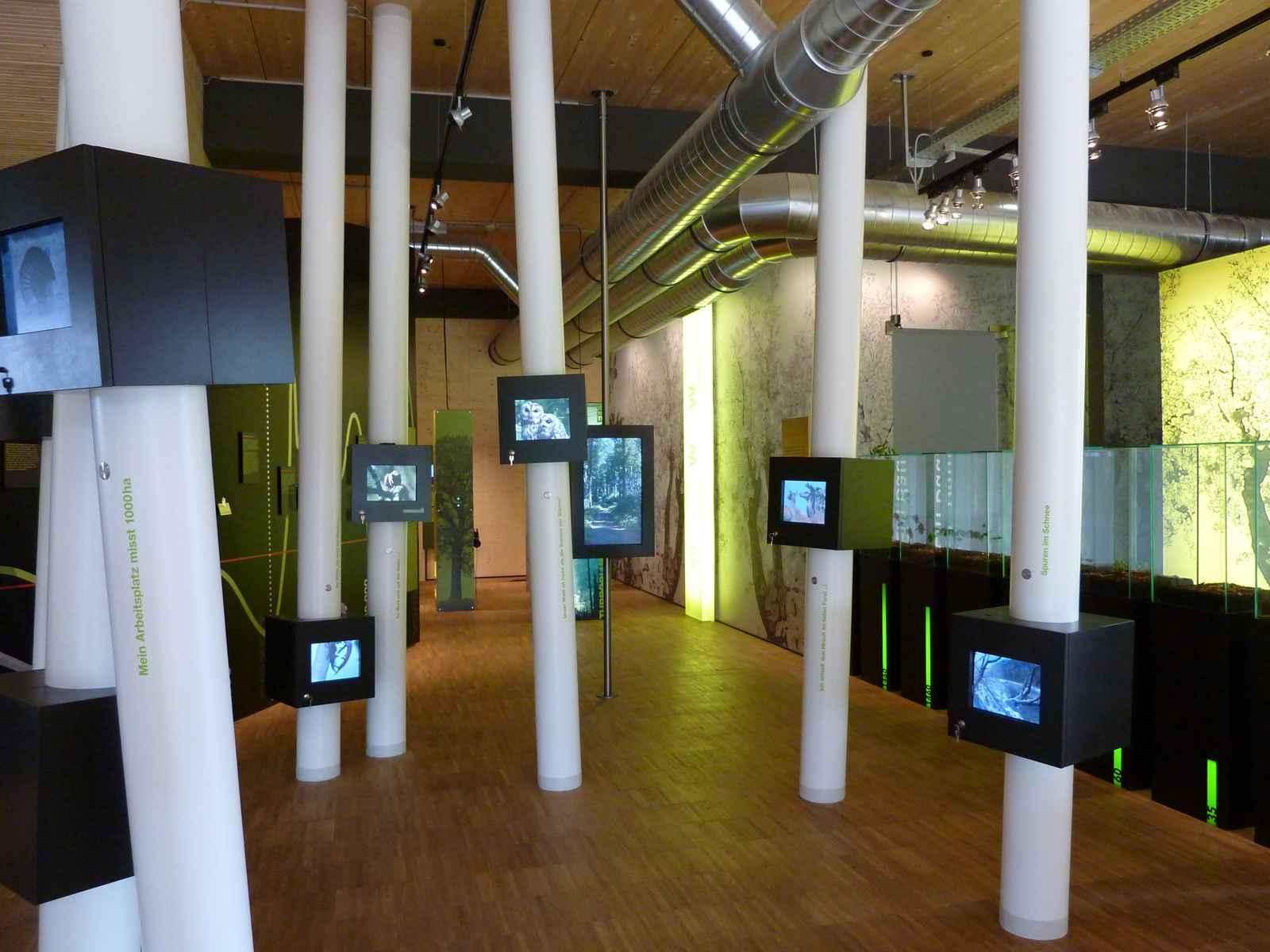 Säulenwald mit Monitoren
